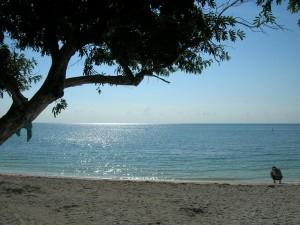 8 Beach