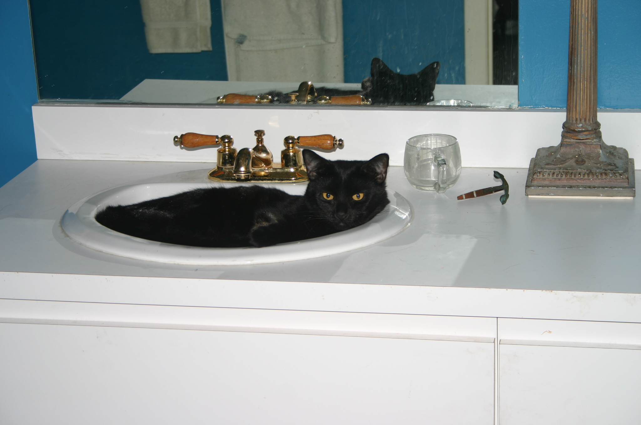 """Go ahead; touch the faucet.  Just be sure your health insurance is paid up."""