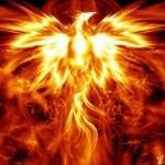 Phoenix-4